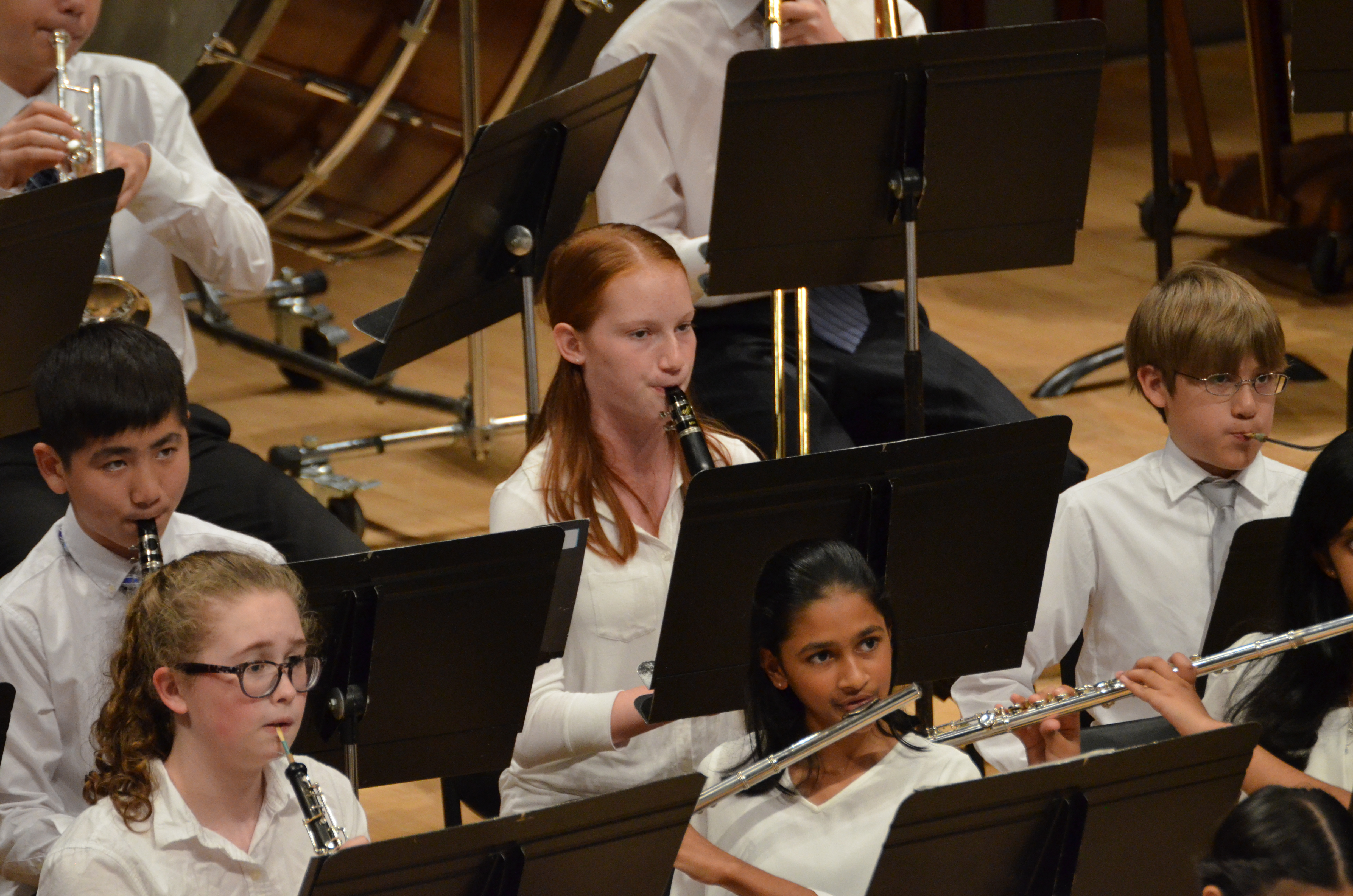photo of orchestra clarinetists during performance