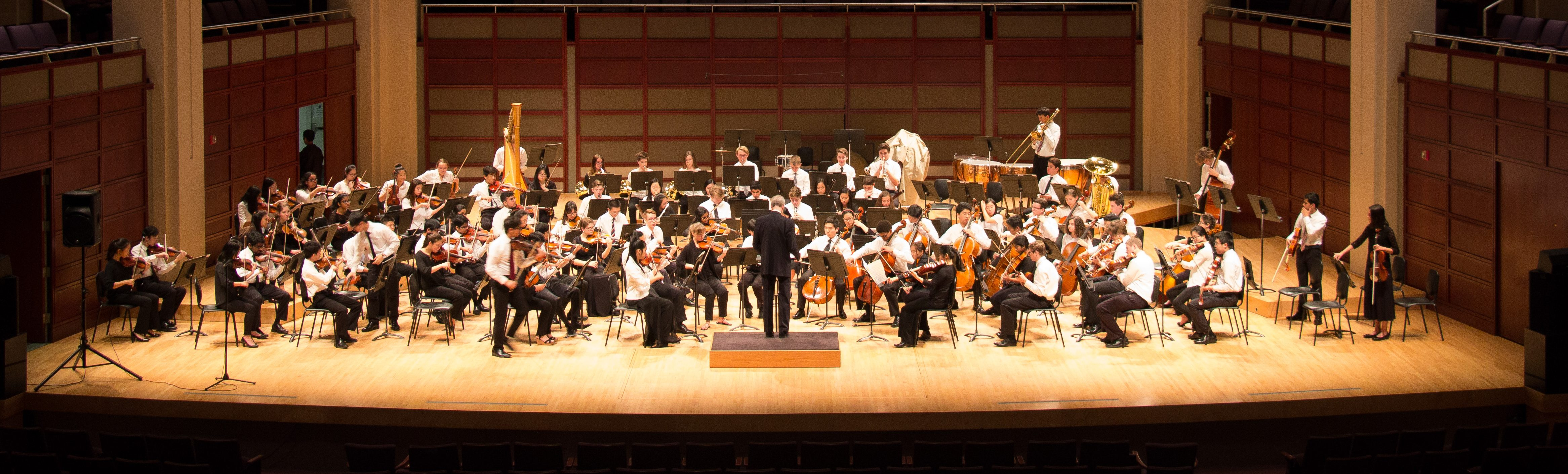 photo of entire triangle youth philharmonic on stage during a performance