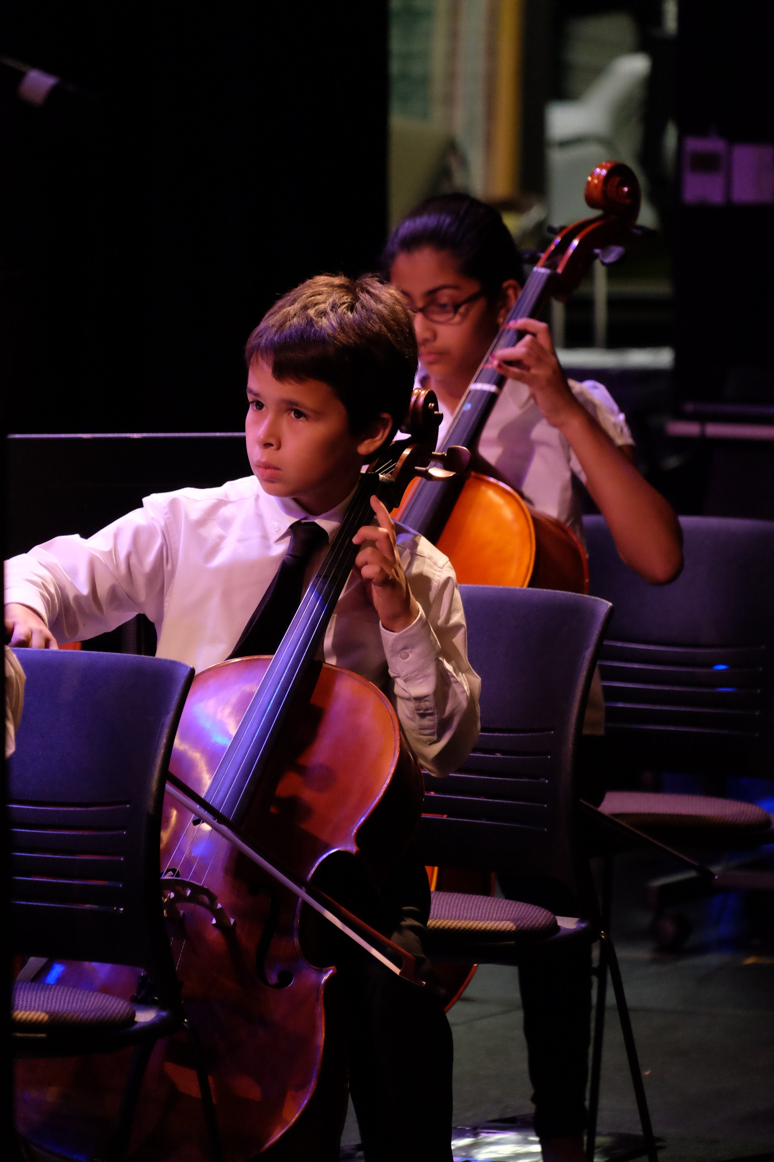 photo of two string orchestra cellists during a concert