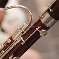 Photo of a bassoon