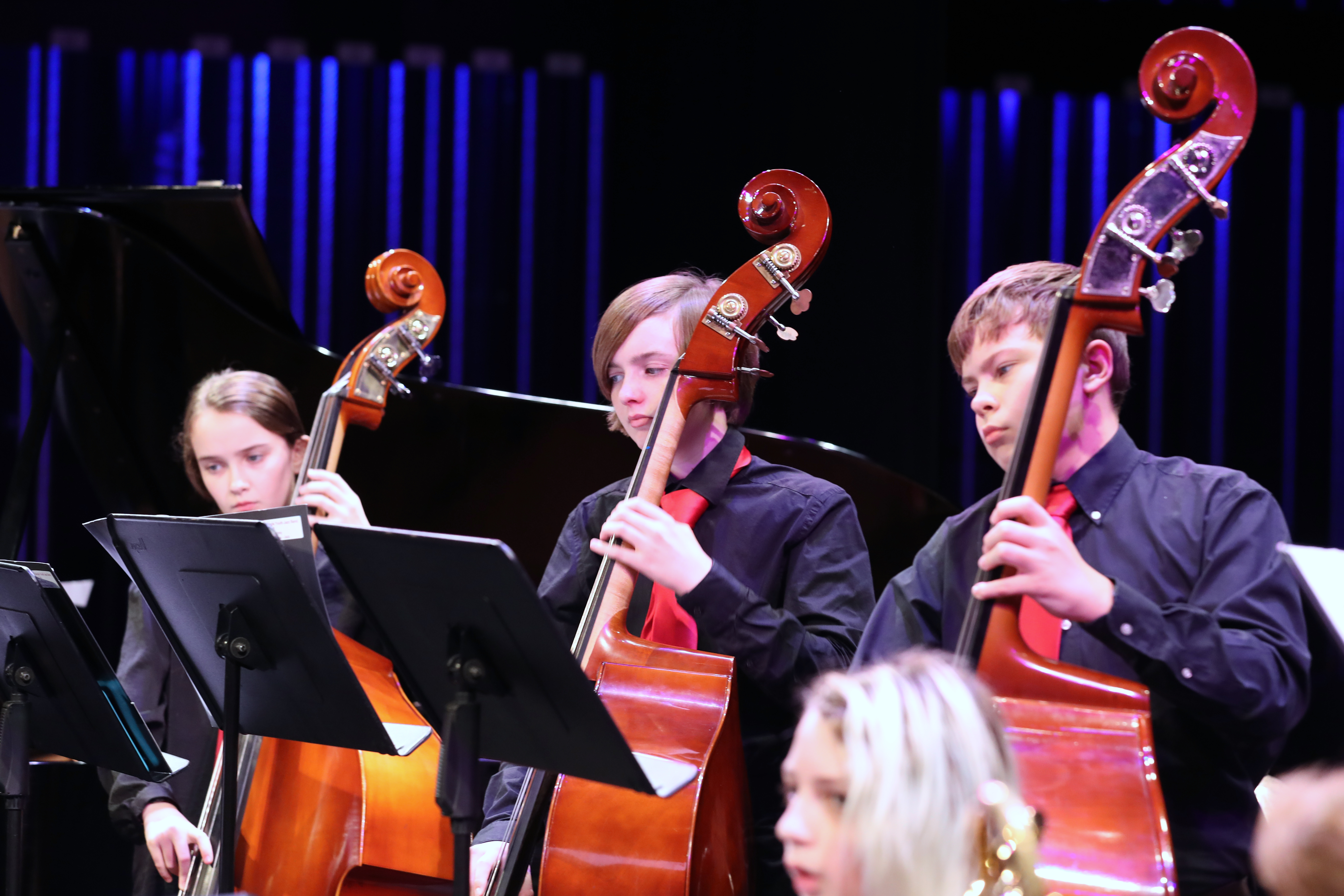 photo of jazz band bassists in action