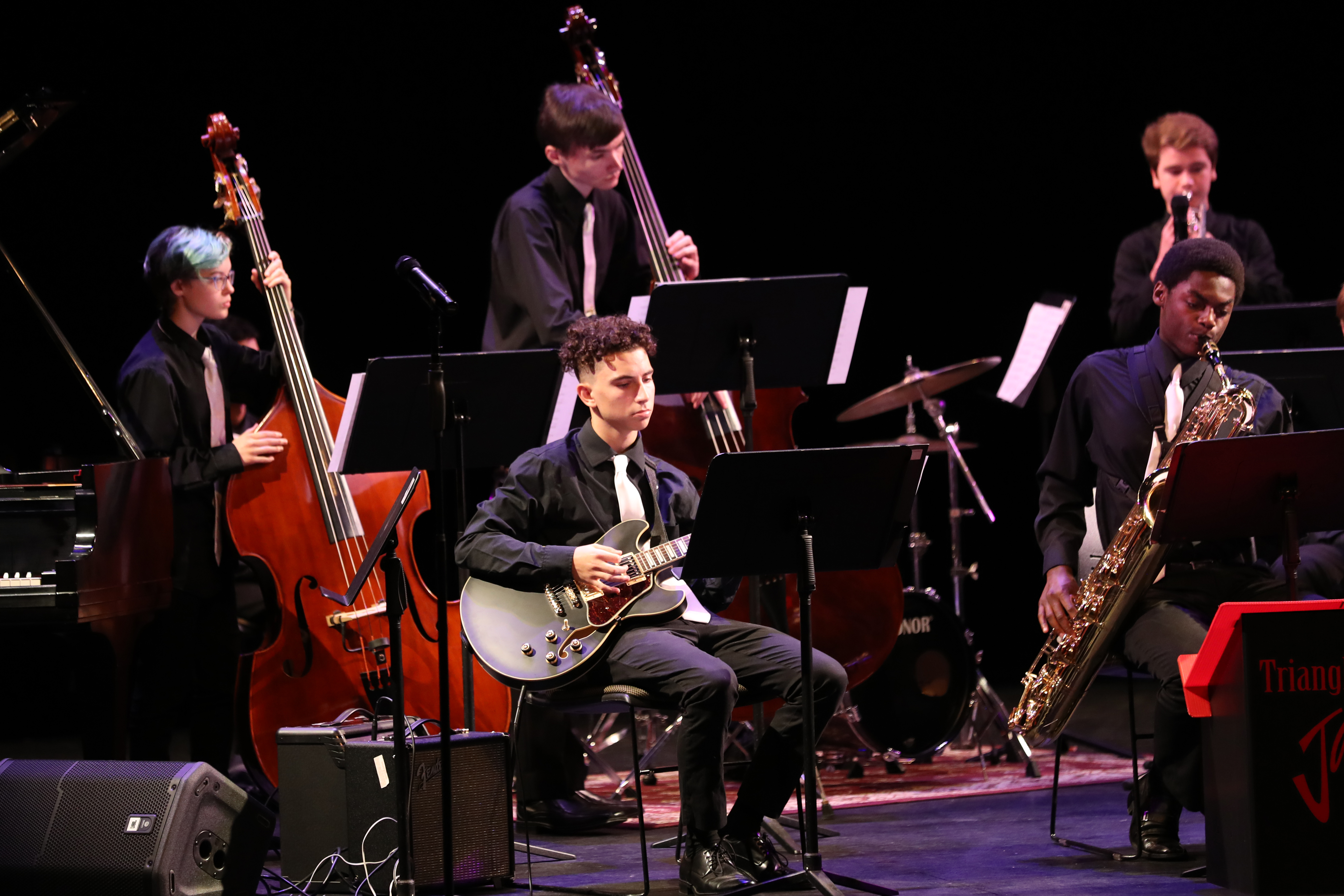 photo of various musicians during jazz orchestra concert