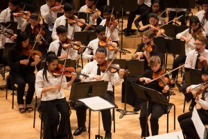 photo of philharmonic violin section during a performance