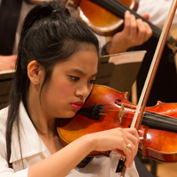 photo of focused violinist at philharmonic concert