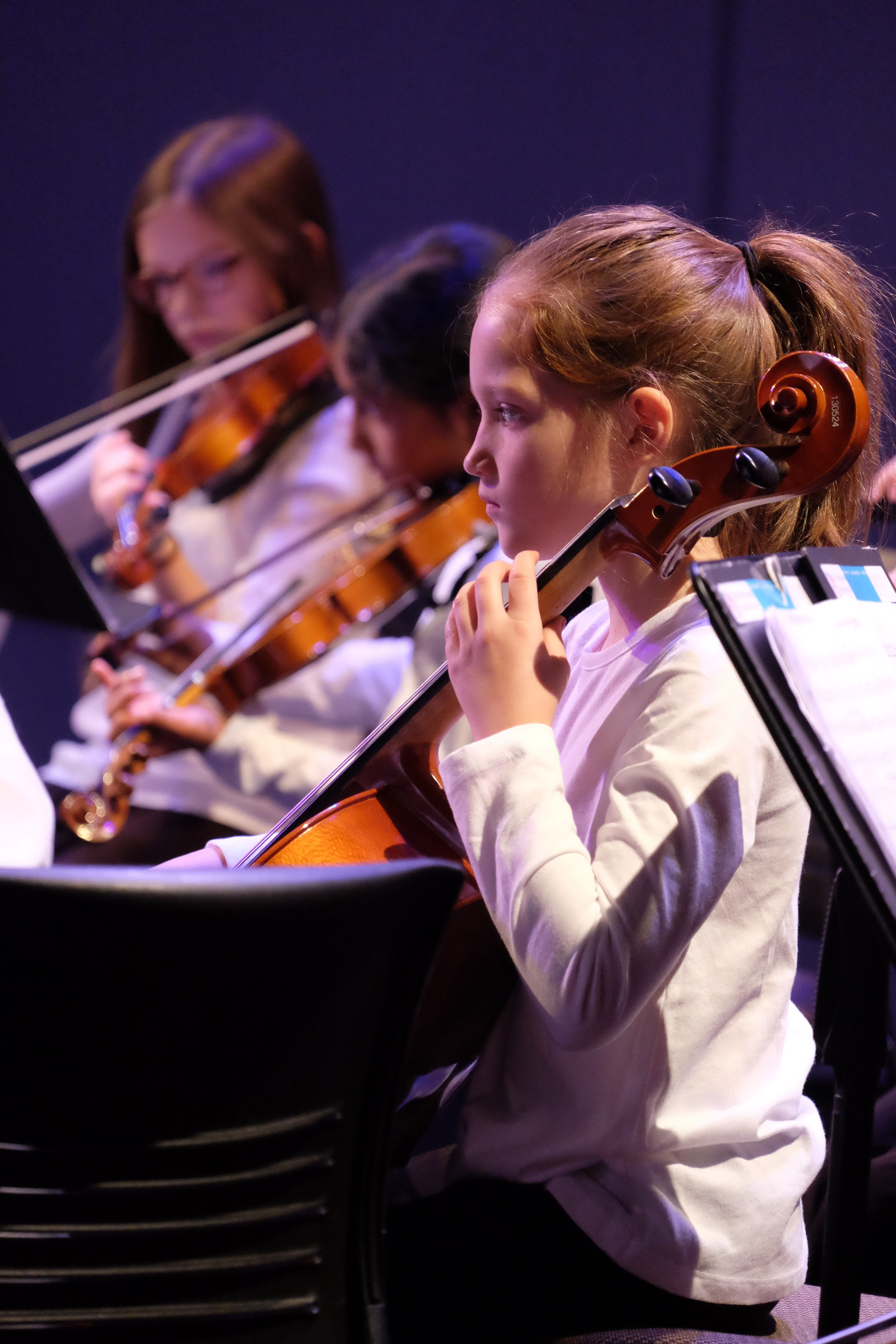 photo of string orchestra cellists during a concert
