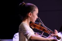 close up photo of string orchestra violinist during a concert