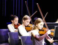 photo of string orchestra violinists during a concert