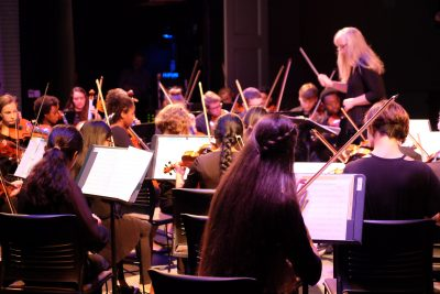 photo of string sinfonia with conductor during a performance