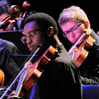 Photo of violinists at string sinfonia concert