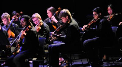 Photo of string sinfonia viola section