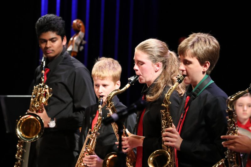 Photo of saxophonists during jazz concert