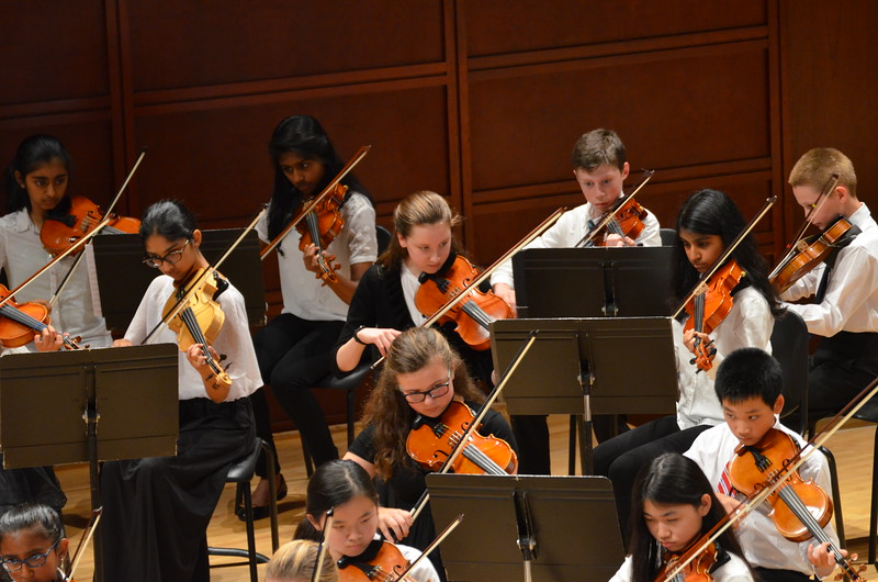Photo of violin section at orchestra concert