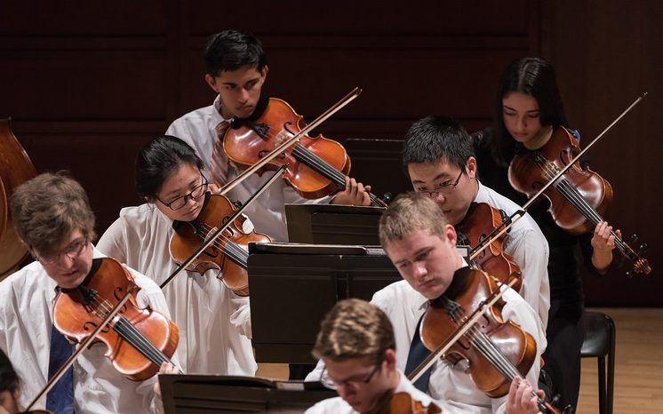 Photo of the TYP viola section during a concert