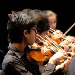 Photo of violin section at string sinfonia concert