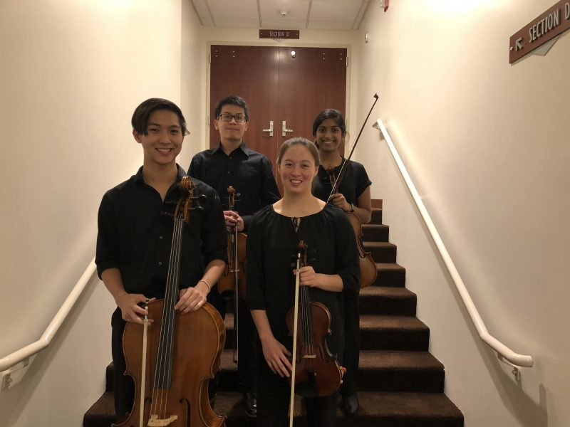 members of the TYP String Quartet 2019-20