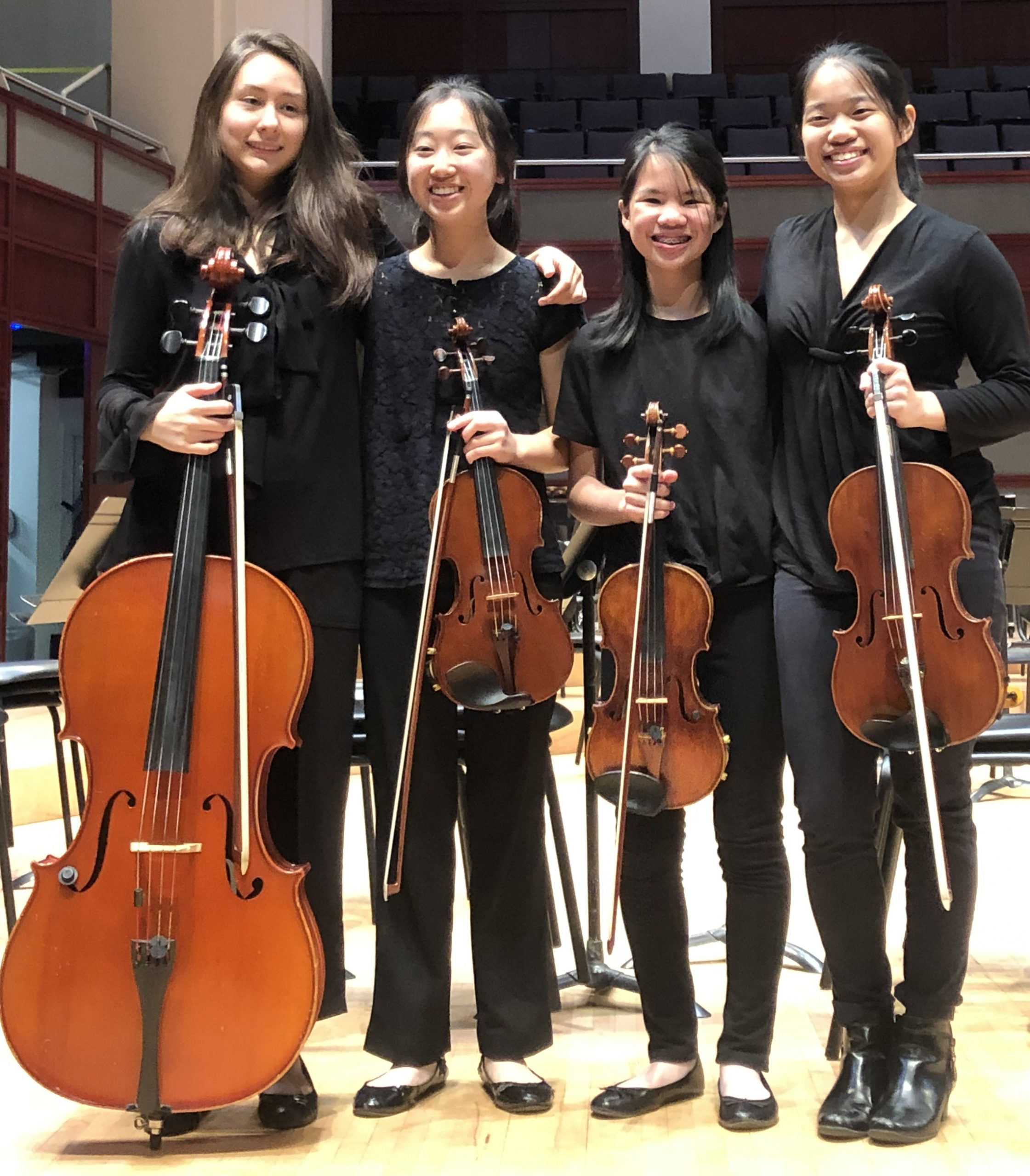 Members of the PA String Quartet